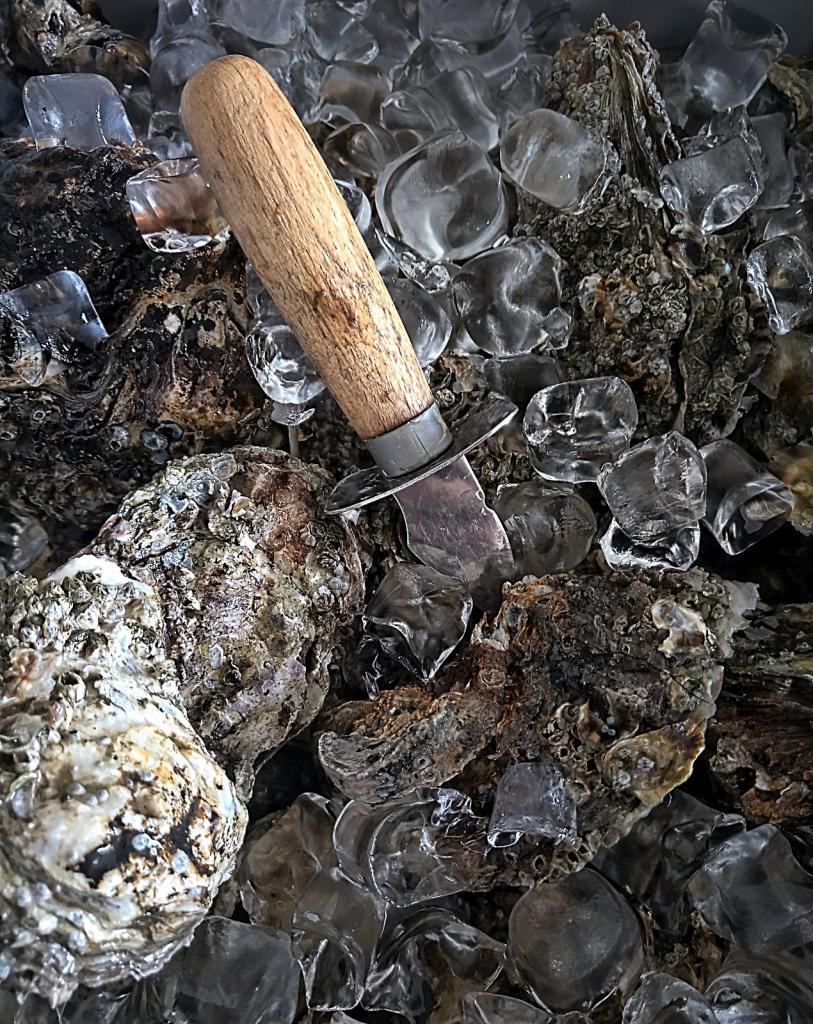 Østerstema: Hvad siger du til østers – Love or hate?