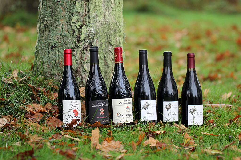 Derfor holder jeg så meget af Rhône vin
