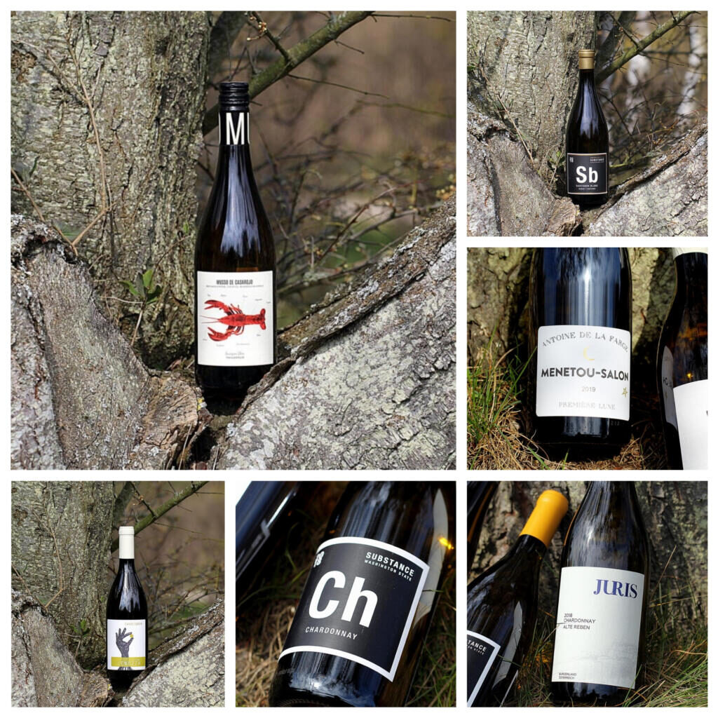 International Chardonnay og Sauvignon Day